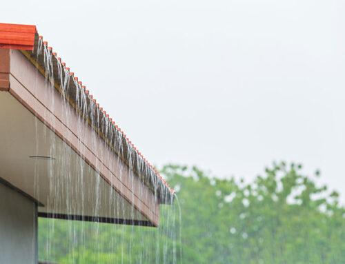 Humedades: cómo evitar la aparición de goteras y humedades en la vivienda