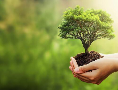 Beneficios del aislamiento térmico para el medio ambiente